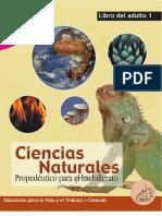 Ciencia_Movimiento_ Materia.pdf