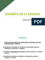DINÂMICA DE CLAREIRAS