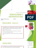 HEMOGLOBINA Y ERITROPOYETINA.UCV.pptx