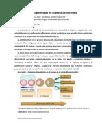 02. Fisiopatología de La Placa de Ateroma