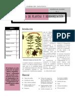 9 Herborizacion.pdf