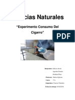 experimento de ciencias naturales.docx