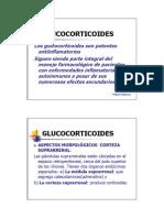 14_glucocortic_04