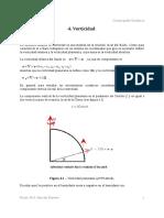 vorticidad.pdf