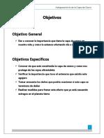 209084787-Informe-Sobre-La-Capa-de-Ozono.docx