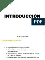 08 Lixiviacion por agitacion.pdf