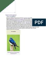 tree swallow birds.docx