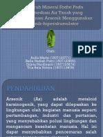 Phytoremediasi Dengan p. Vittata Arsen Edit