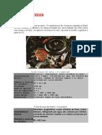 252940498 Datos Tecnicos Chevette Doc