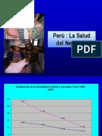 1.Situacion Neontal en El Peru
