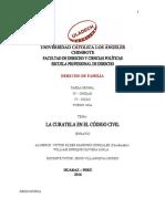 2.T GRUPAL IVU La Curatela c.c