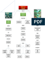 mapas ecologia 1.docx