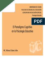 APRENDIZAJE COGNITIVO.pdf