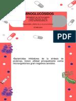 Aminoglucósidos
