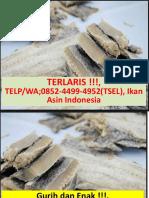TERLARIS !!!, 0852-4499-4952(TSEL), Ikan Asin Indonesia