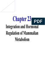 ANI-REGULASI METABOLISME.pdf