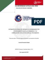 Ormachea Quispe Juvenal Leishmaniasis Procesamiento Digital Imagenes
