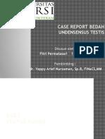 PPT Undesensus Testis