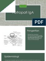 nefropati IgA