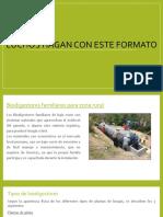 Biodigestores-1