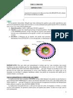 06 Virus y Priones