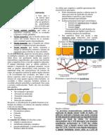 histologia tecido epitelial