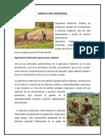 Agricultura Tradicional Cultivo Permanente Semipermanete Ciclico Industrial (2)