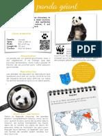 Le-panda
