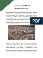 Contaminación Ambiental-Realidad e Indiferencia