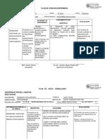 3-PLAN-DE-ATENCION-ENFERMERI.docx