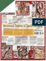 Venomous Snake Ssc