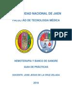 GUIA DE PRACTICAS  - UNJ 2018 - II.docx