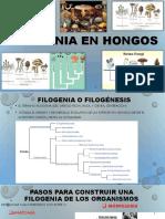 MICOLOGIA2 - copia.pptx