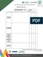 Formato Practica PDF