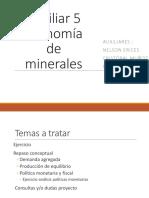Auxiliar 5 Economía de Minerales Aux. 5