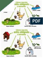 cuidado de los animales.docx