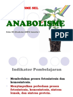 Bab 2 Anabolisme.ppt