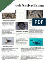 native fauna micro tutorial