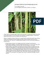 Bamboo Benefits