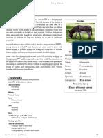 Donkey - Wikipedia
