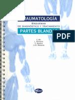 Esquemas de Diagnóstico y Tratamiento en Traumatología (1996)