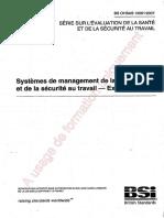 18001v2007.pdf