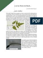 Boletin-sedibac-2004.pdf