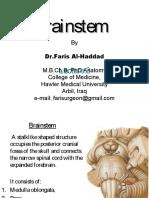 neuroanatomylec-170125154943