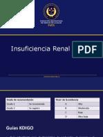 Insufuciencia Renal Cronica