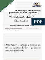 Nelson Moura Brasil