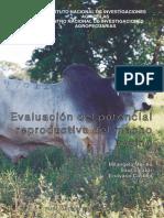 Eval_poten_repro_macho bovino.pdf