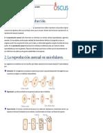 2. La reproducción asexual en unicelulares..pptx