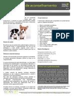 9-A-saúde-do-cão
