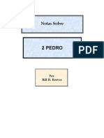 2 PEDRO NOTAS SOBRE junio 2004.pdf